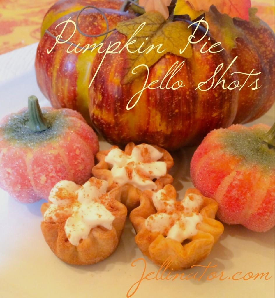 Pumpkin Pie Jello Shots - Jellinator.com