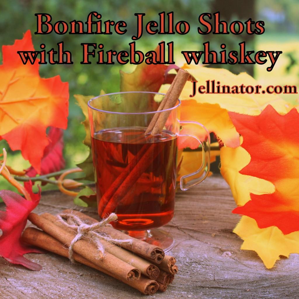 Bonfire Jello Shots with Fireball whiskey - Jellinator.com
